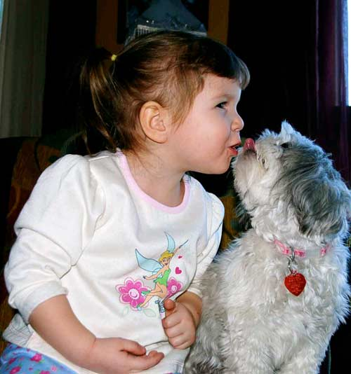 Free_puppy_kisses