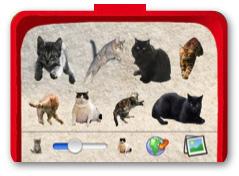 Cat_paint_litter_box