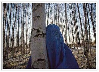 Burqa_babes_iphone