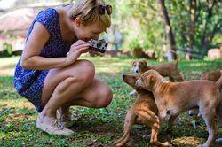 IPhone_Polaroid_Puppies