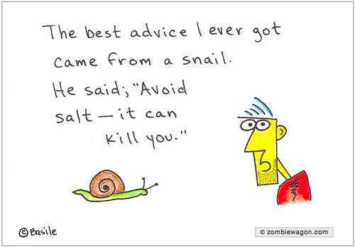 A_Simple_Snail_Tale