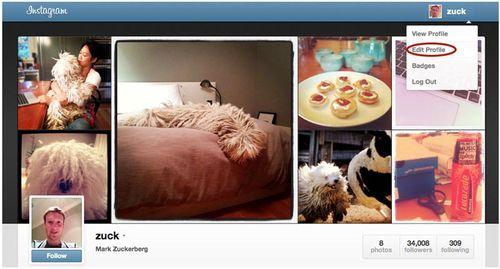 Instagram_online_Profile